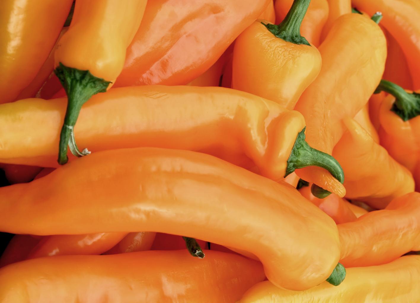 Gut ein Dutzend Früchte des gelben Spitzpaprika 'Pinokkio' liegen kreuz und quer durcheinander