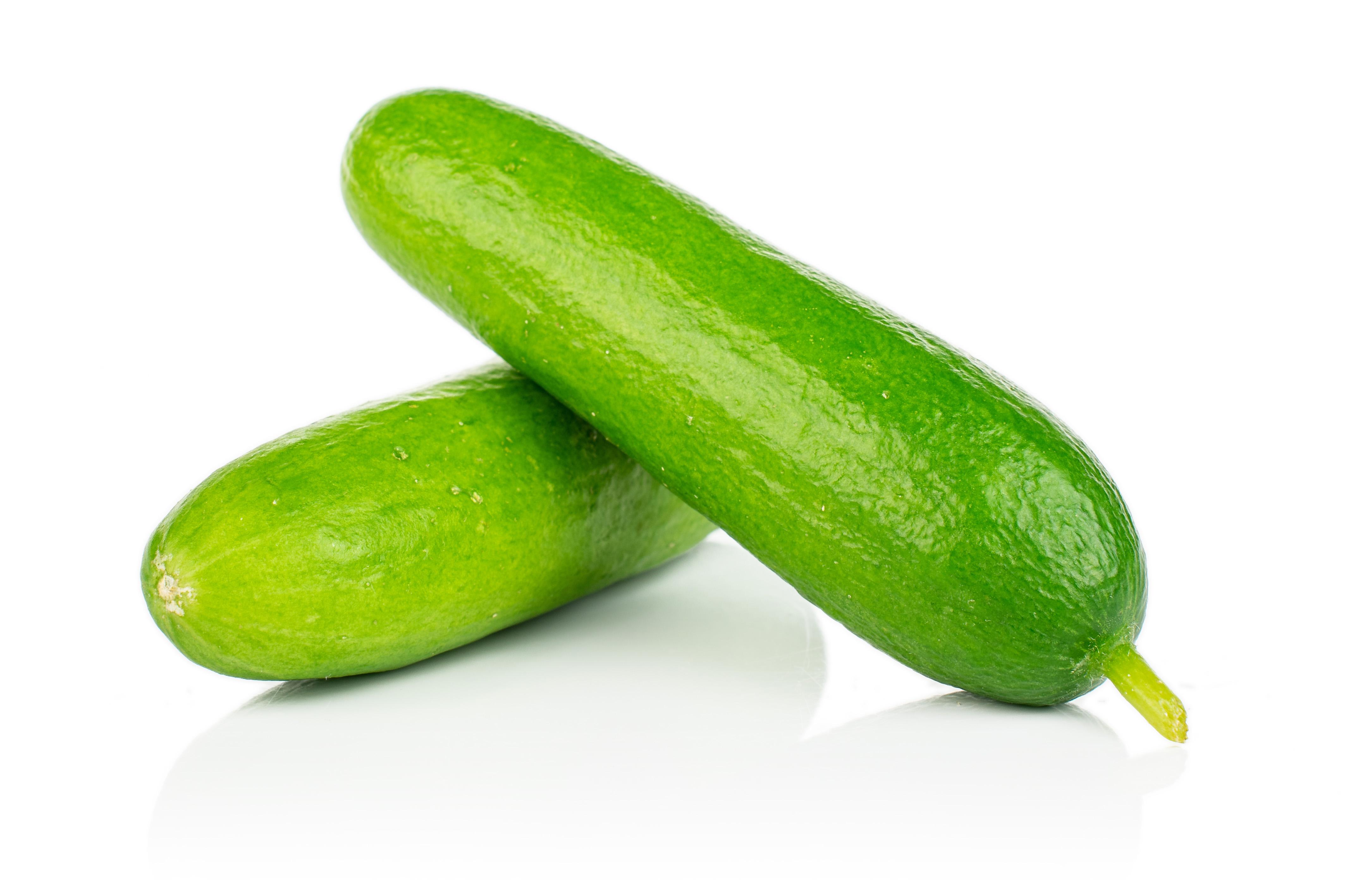 Die beiden Bio-Minigurken der Sorte 'Picolino' glänzen saftig hellgrün
