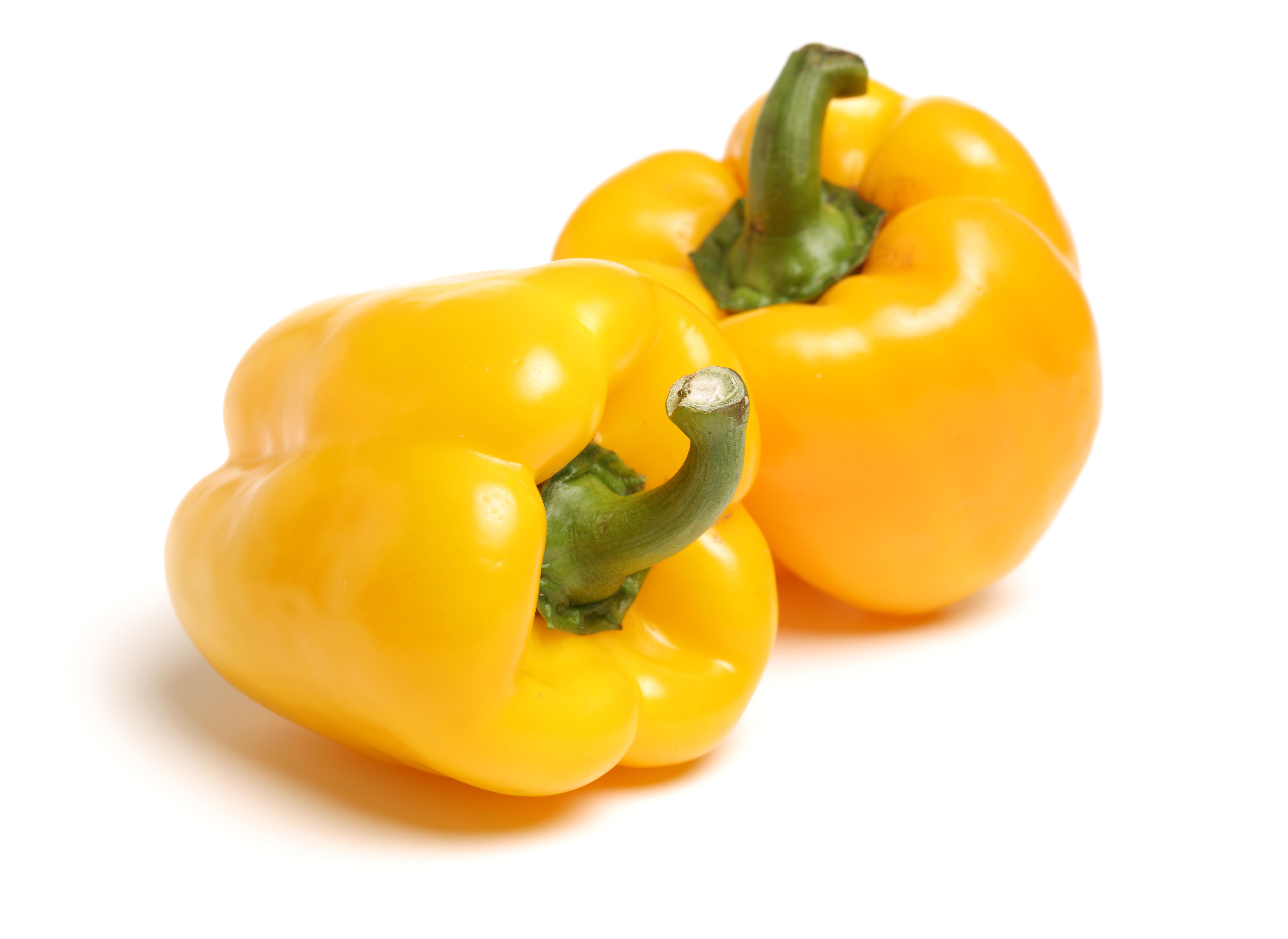 Zwei knackige Früchte des Bio-Paprika 'Beluga Yellow' liegen nebeneinander