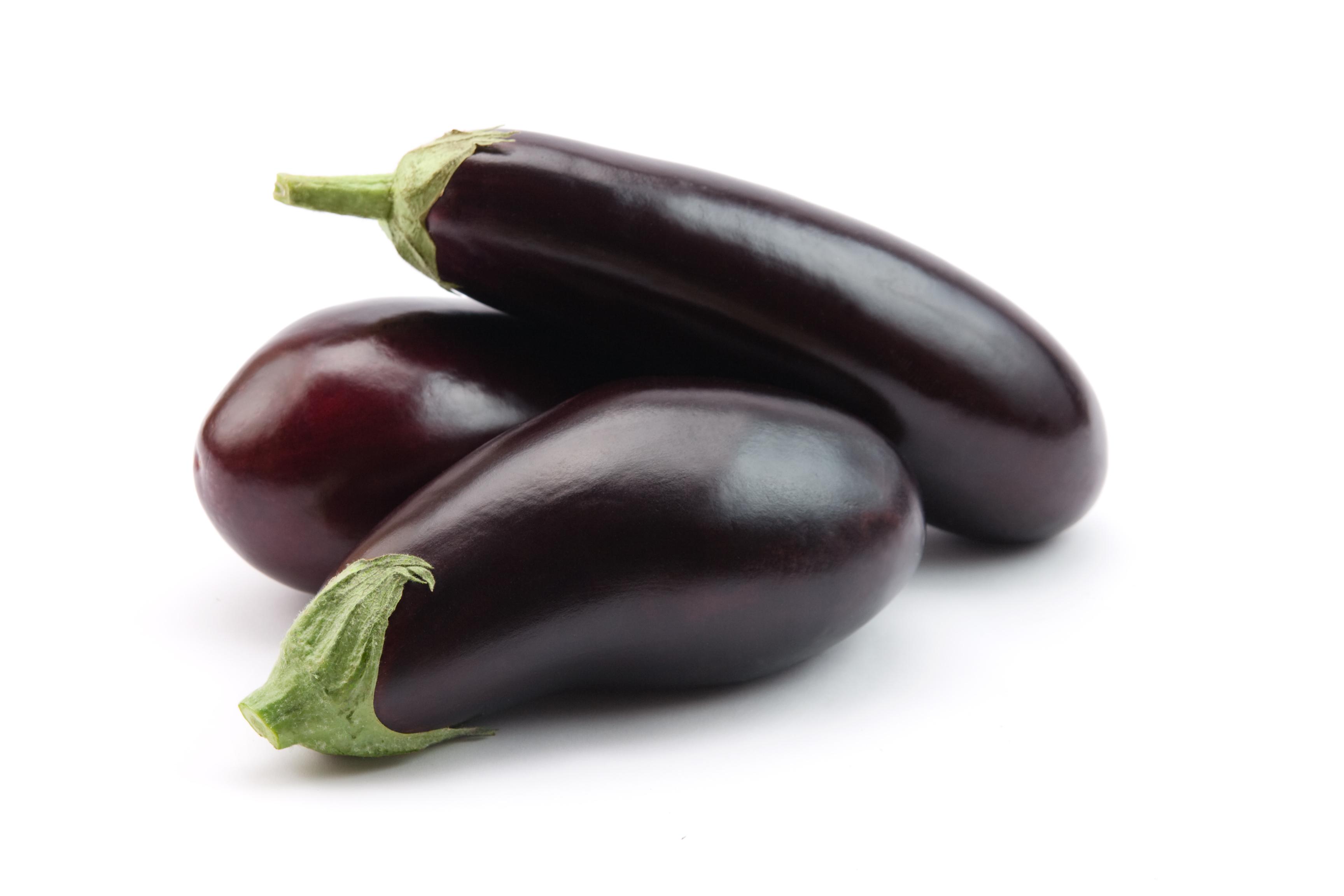 Glänzende dunkelviolette Bio-Auberginen der Sorte 'Bartok'