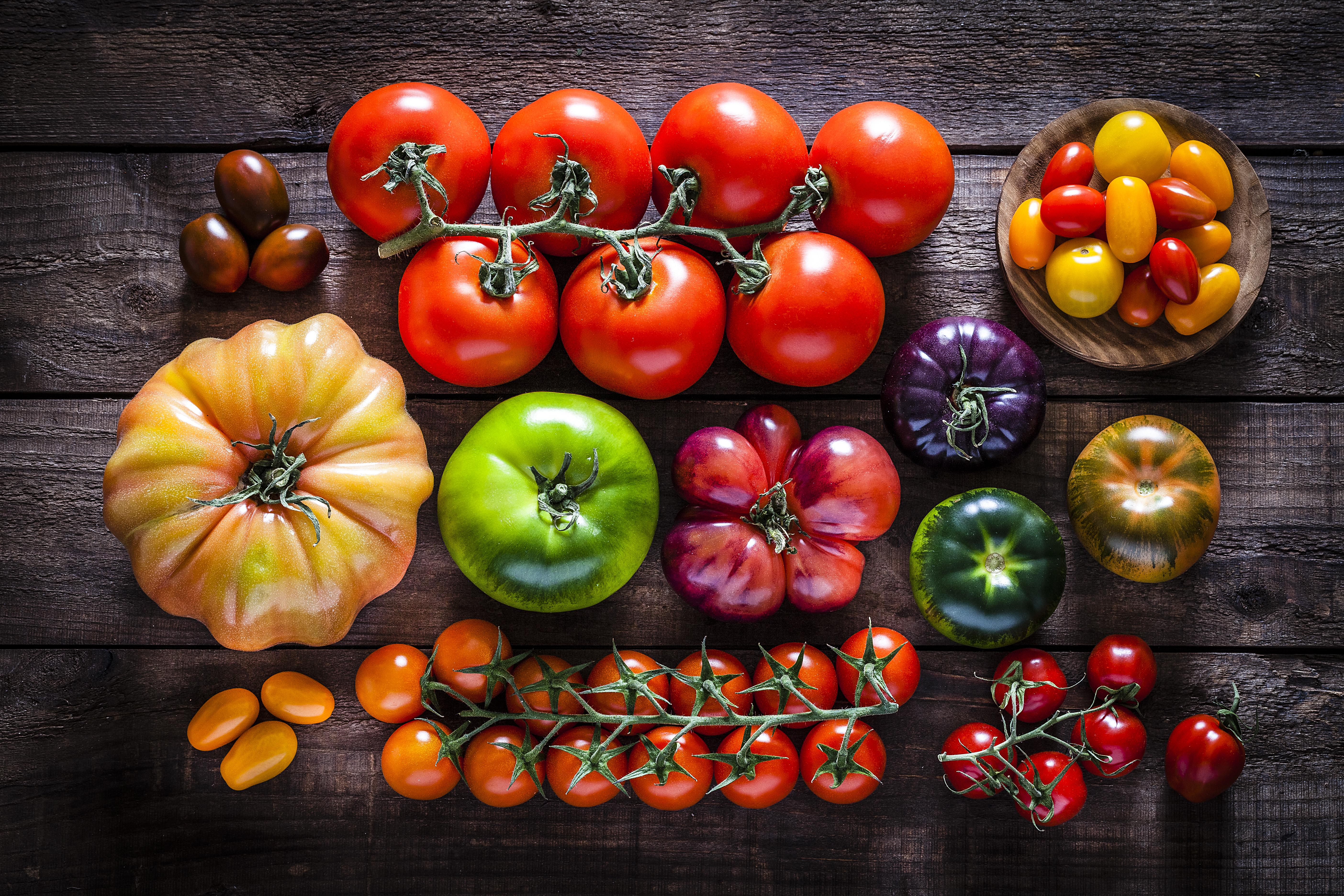 Große Vielzahl an Bio-Tomaten in allen Farben, Formen und Größen