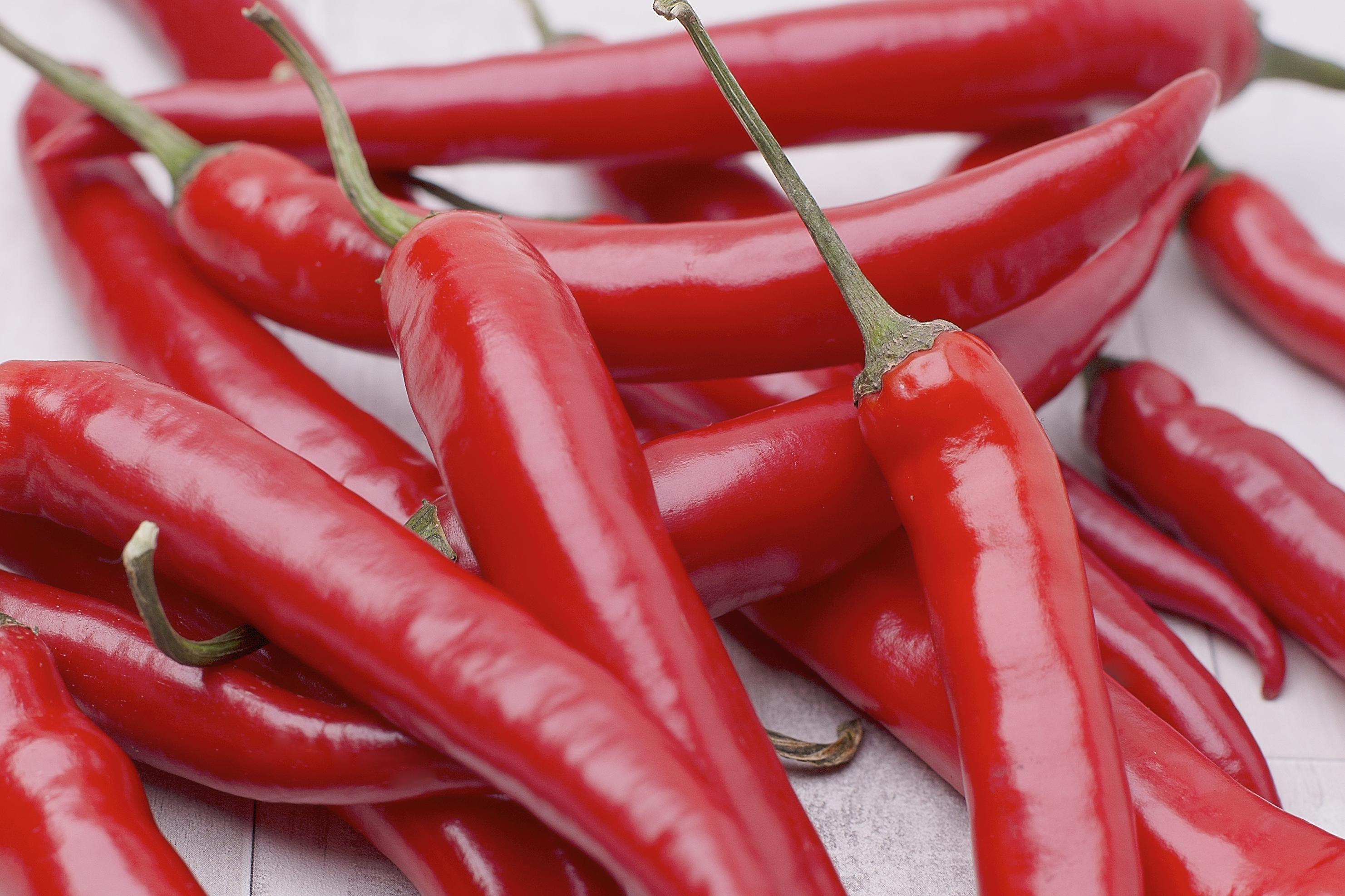 Mehrere feuerrote Chili-Peperoni der Bio-Sorte 'Fireflame' liegen kreuz und quer übereinander
